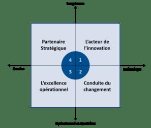 DSI rôles